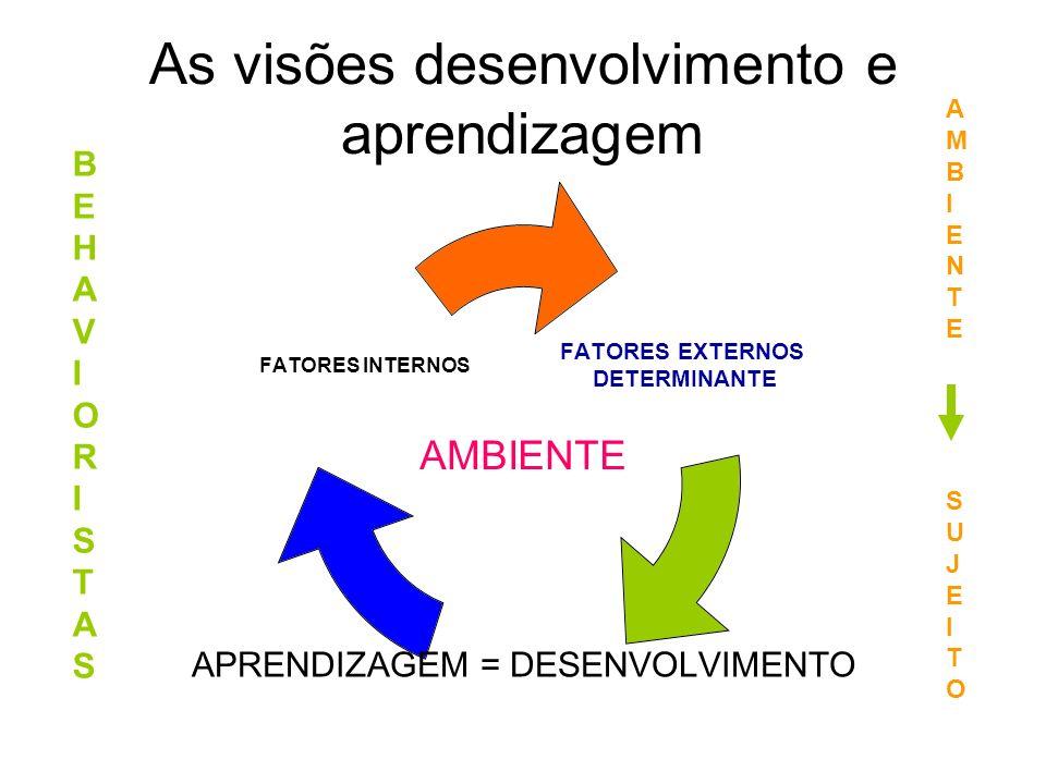 As visões desenvolvimento e aprendizagem FATORES EXTERNOS DETERMINANTE APRENDIZAGEM = DESENVOLVIMENTO FATORES INTERNOS BEHAVIORISTASBEHAVIORISTAS AMBI