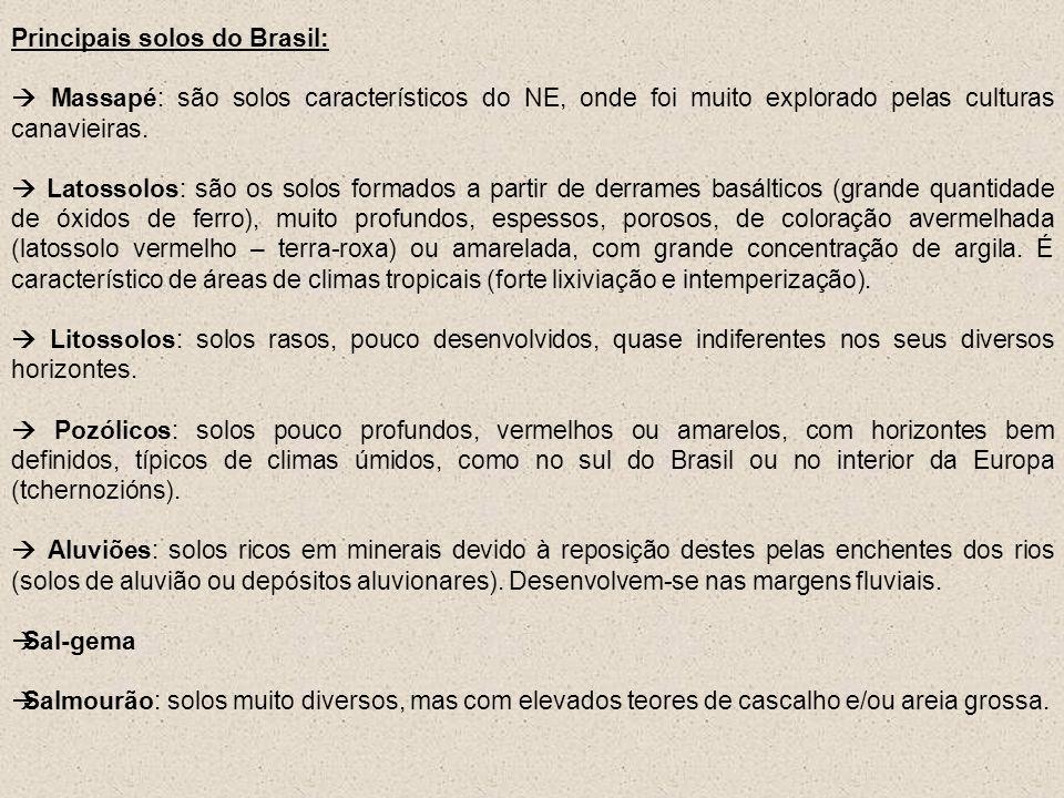 Principais solos do Brasil: Massapé: são solos característicos do NE, onde foi muito explorado pelas culturas canavieiras. Latossolos: são os solos fo