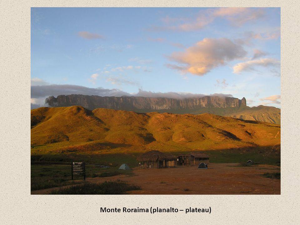 Monte Roraima (planalto – plateau)