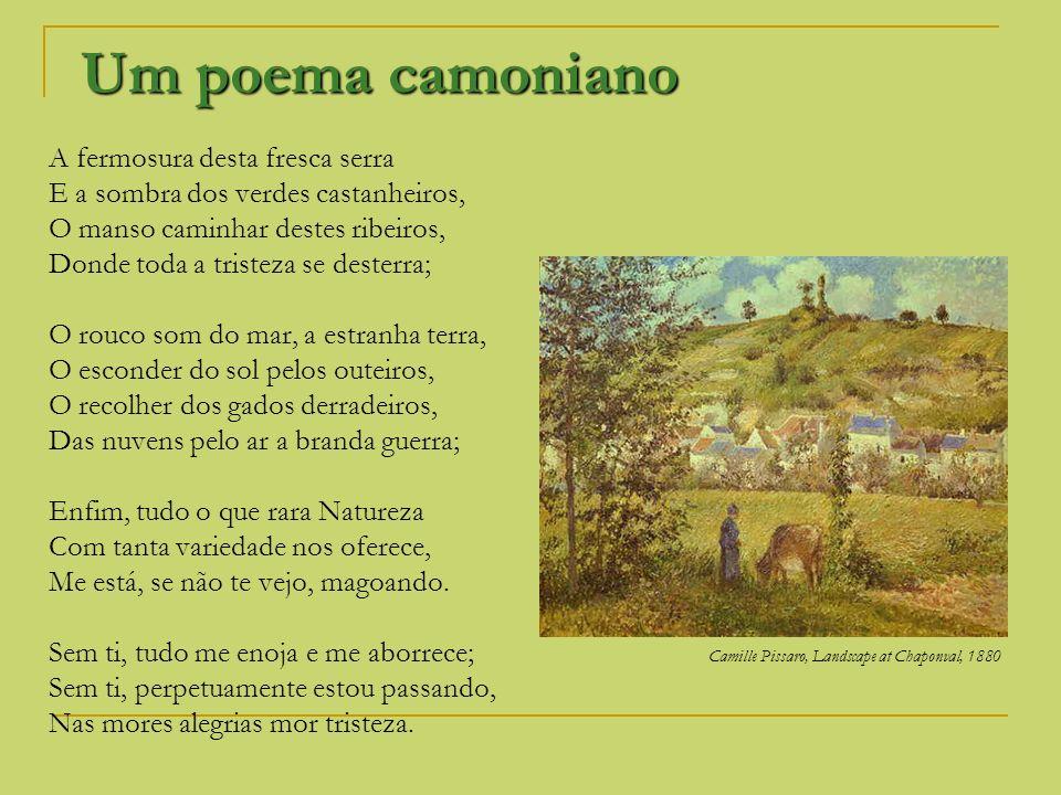Um poema camoniano A fermosura desta fresca serra E a sombra dos verdes castanheiros, O manso caminhar destes ribeiros, Donde toda a tristeza se deste