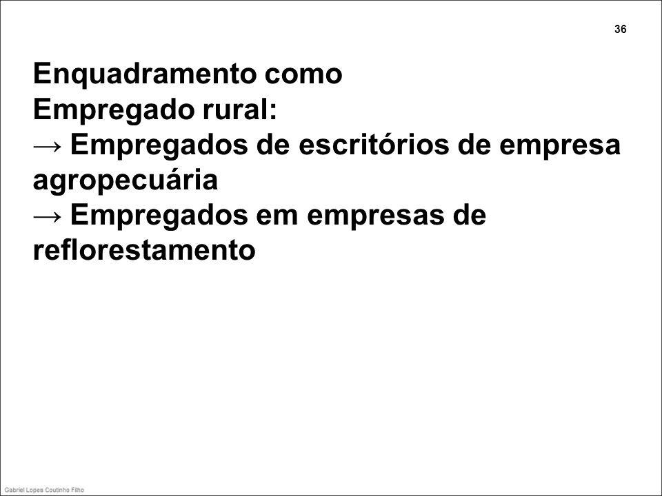Enquadramento como Empregado rural: Empregados de escritórios de empresa agropecuária Empregados em empresas de reflorestamento 36