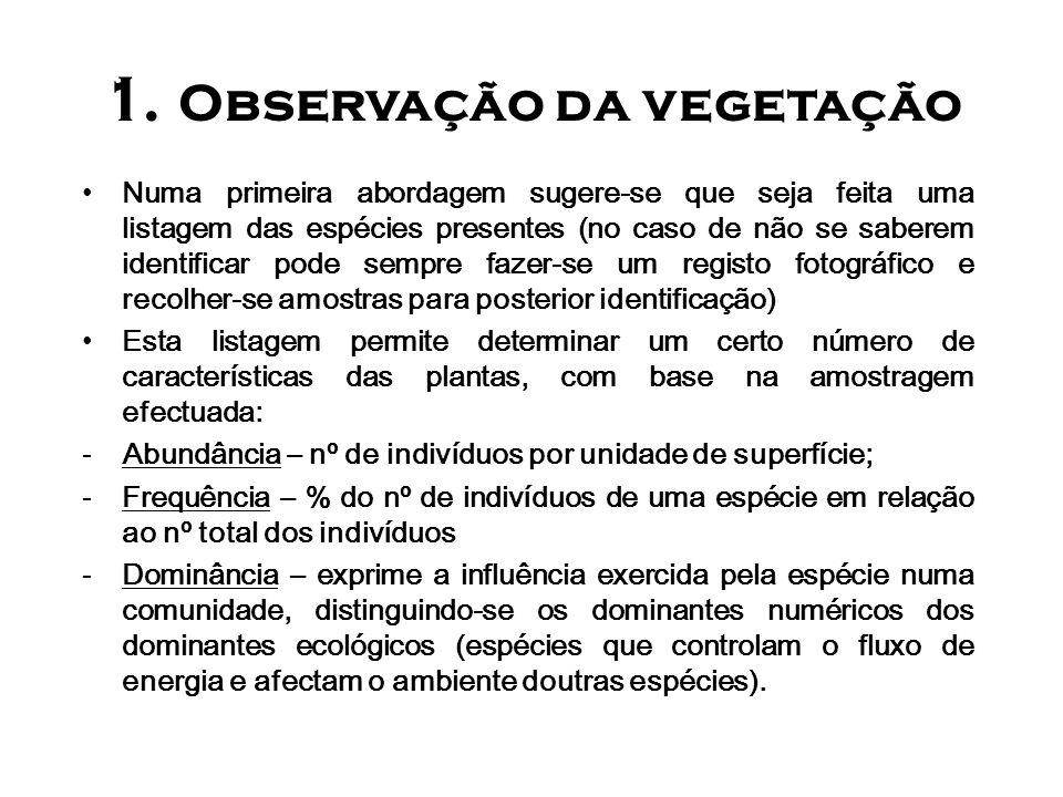 1. Observação da vegetação Numa primeira abordagem sugere-se que seja feita uma listagem das espécies presentes (no caso de não se saberem identificar