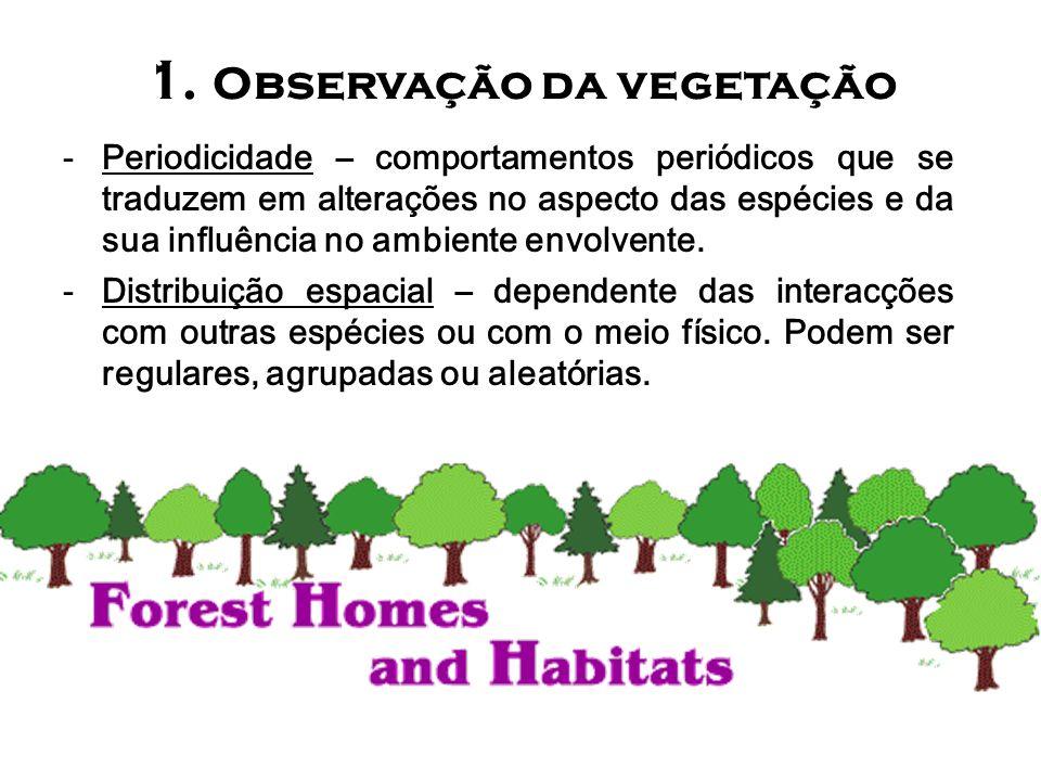 1. Observação da vegetação -Periodicidade – comportamentos periódicos que se traduzem em alterações no aspecto das espécies e da sua influência no amb