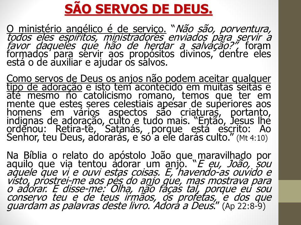 SÃO SERVOS DE DEUS. O ministério angélico é de serviço. Não são, porventura, todos eles espíritos, ministradores enviados para servir a favor daqueles