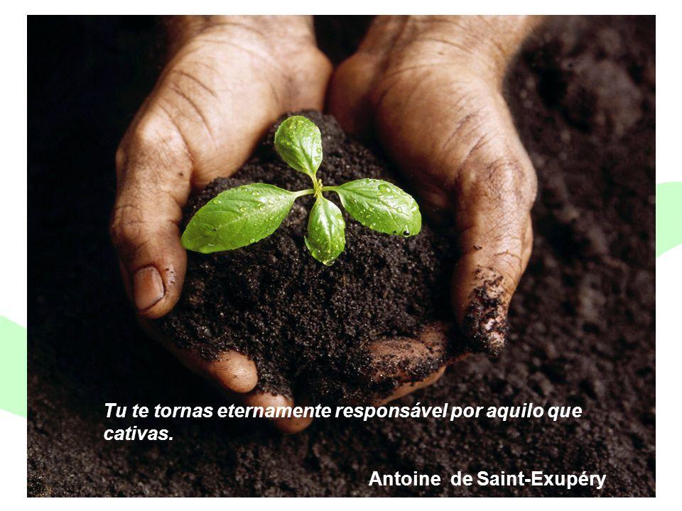 Encontro Municipal de Conselhos Jan/201029 Tu te tornas eternamente responsável por aquilo que cativas. Antoine de Saint-Exupéry