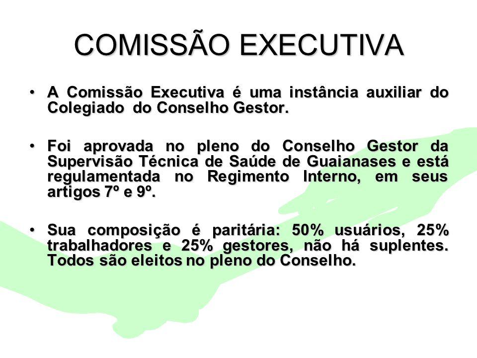 Encontro Municipal de Conselhos Jan/20109 COMISSÃO EXECUTIVA A Comissão Executiva é uma instância auxiliar do Colegiado do Conselho Gestor.A Comissão
