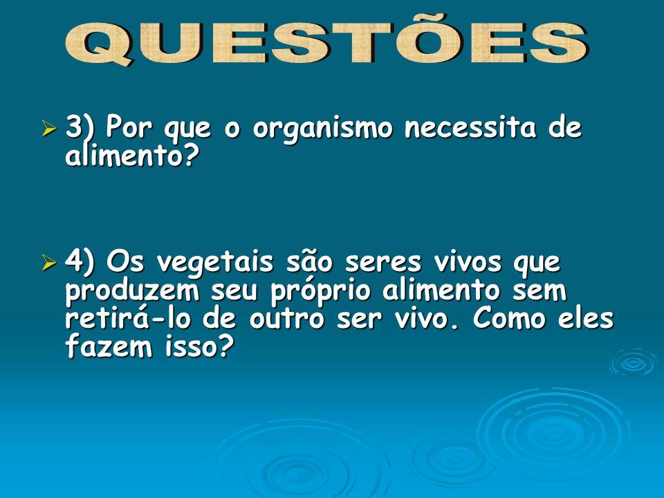 3) Por que o organismo necessita de alimento? 3) Por que o organismo necessita de alimento? 4) Os vegetais são seres vivos que produzem seu próprio al