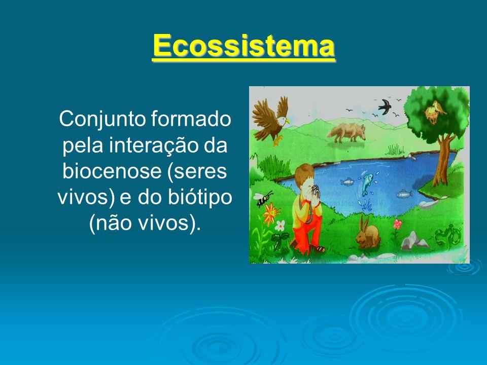 Ecossistema Conjunto formado pela interação da biocenose (seres vivos) e do biótipo (não vivos).