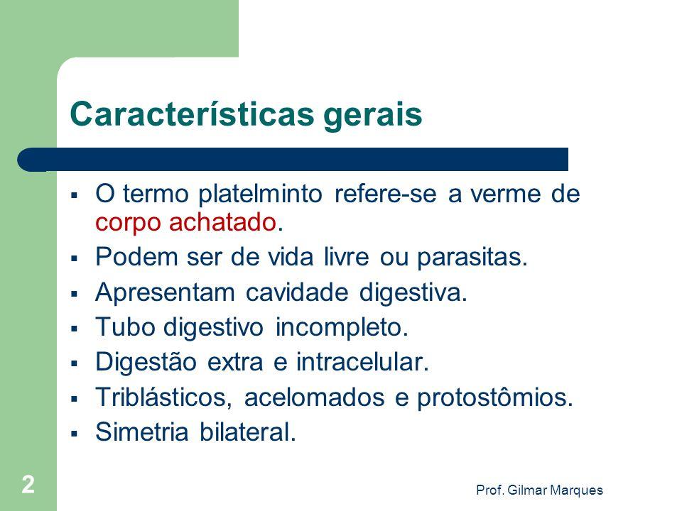 Características gerais O termo platelminto refere-se a verme de corpo achatado. Podem ser de vida livre ou parasitas. Apresentam cavidade digestiva. T