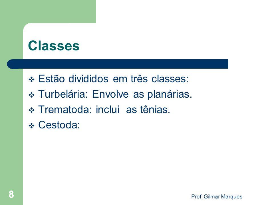 Classes Estão divididos em três classes: Turbelária: Envolve as planárias. Trematoda: inclui as tênias. Cestoda: Prof. Gilmar Marques 8
