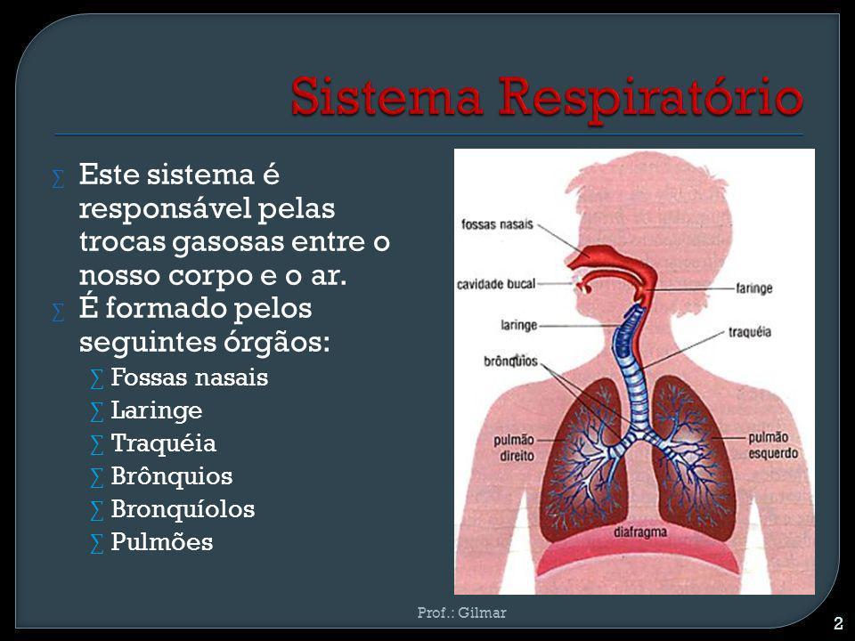 Este sistema é responsável pelas trocas gasosas entre o nosso corpo e o ar. É formado pelos seguintes órgãos: Fossas nasais Laringe Traquéia Brônquios