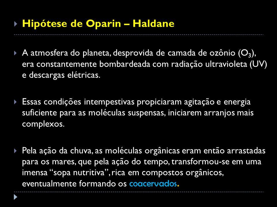 Hipótese de Oparin – Haldane A atmosfera do planeta, desprovida de camada de ozônio (O 3 ), era constantemente bombardeada com radiação ultravioleta (