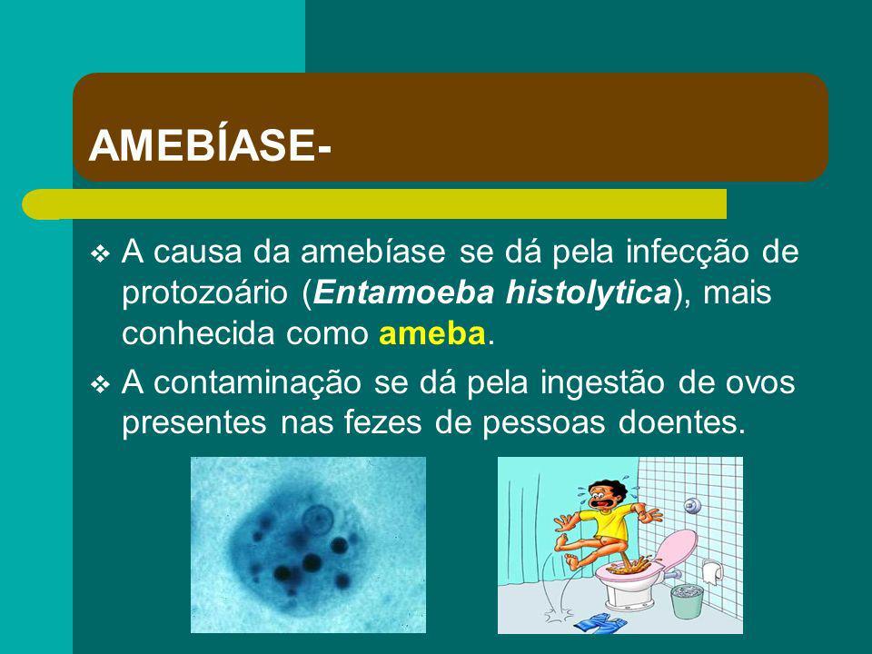 AMEBÍASE- A causa da amebíase se dá pela infecção de protozoário (Entamoeba histolytica), mais conhecida como ameba. A contaminação se dá pela ingestã