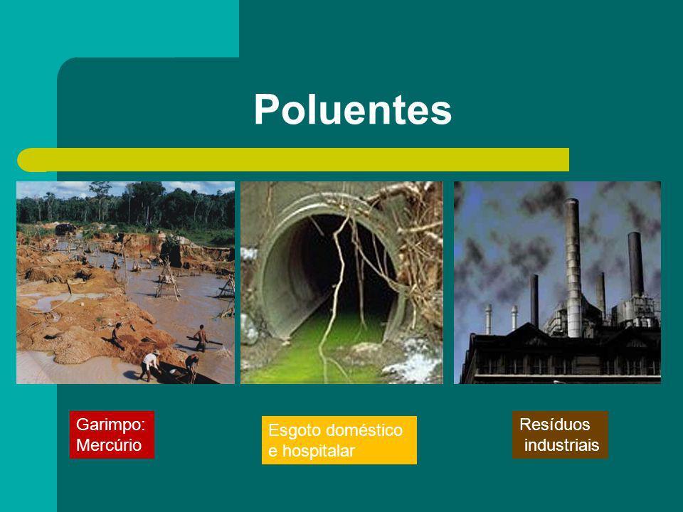 Garimpo: Mercúrio Esgoto doméstico e hospitalar Resíduos industriais Poluentes