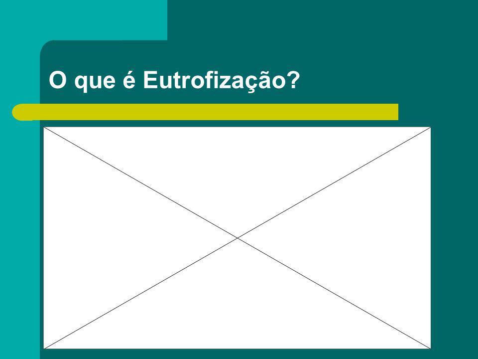 O que é Eutrofização?