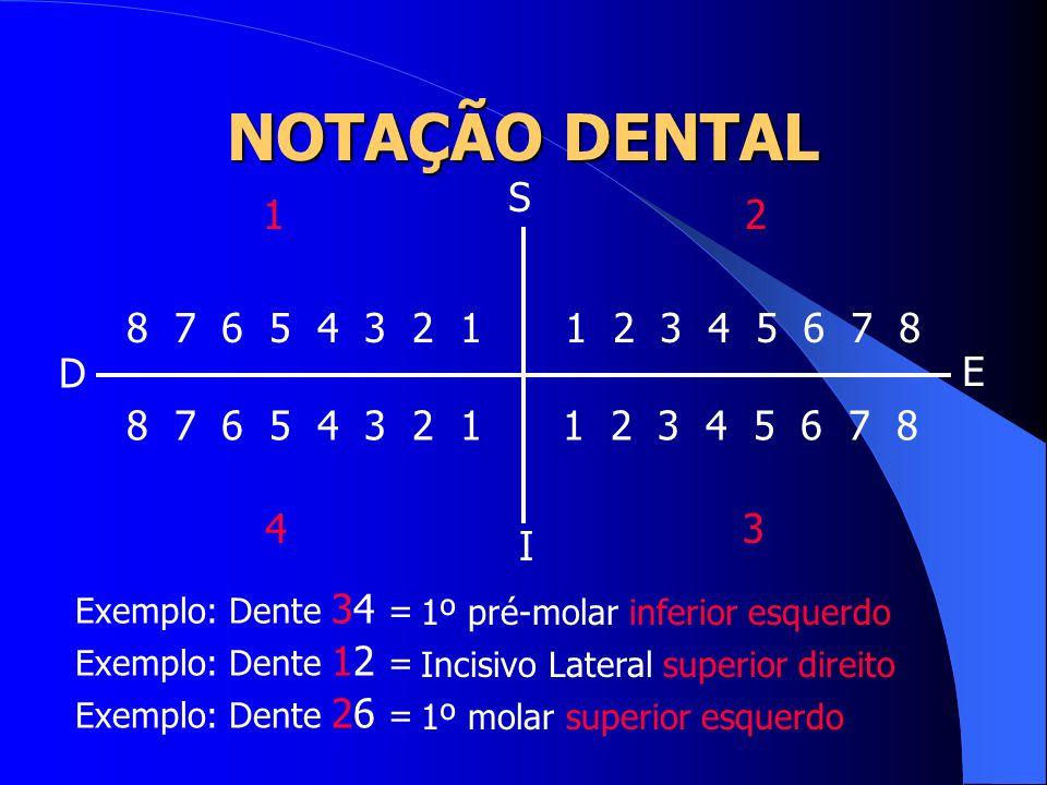 1 2 3 4 5 6 7 8 1 2 3 4 5 6 7 8 8 7 6 5 4 3 2 1 8 7 6 5 4 3 2 1 Exemplo: Dente 34 = S I D E 12 34 1º pré-molar inferior esquerdo Exemplo: Dente 12 = I