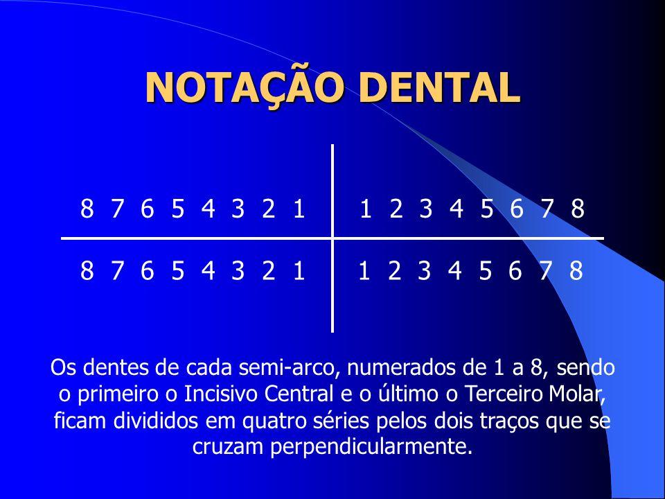1 2 3 4 5 6 7 8 1 2 3 4 5 6 7 8 8 7 6 5 4 3 2 1 8 7 6 5 4 3 2 1 Os dentes de cada semi-arco, numerados de 1 a 8, sendo o primeiro o Incisivo Central e