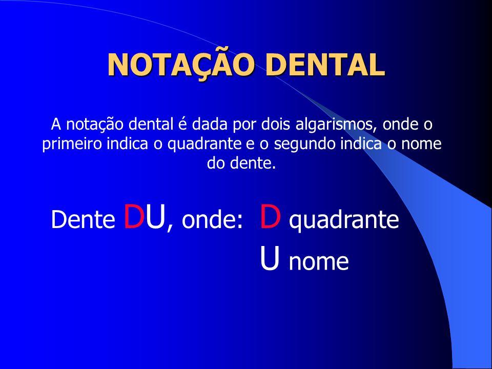 NOTAÇÃO DENTAL A notação dental é dada por dois algarismos, onde o primeiro indica o quadrante e o segundo indica o nome do dente. Dente DU, onde: D q