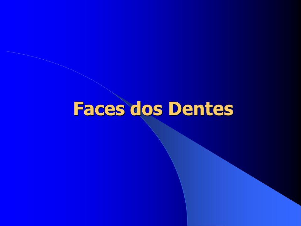 Faces dos Dentes