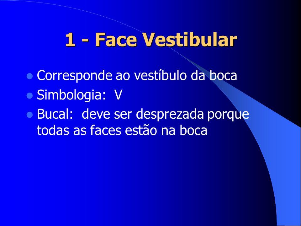 1 - Face Vestibular Corresponde ao vestíbulo da boca Simbologia: V Bucal: deve ser desprezada porque todas as faces estão na boca