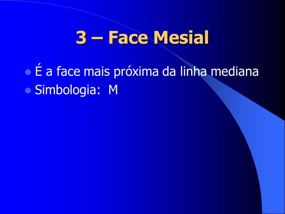 3 – Face Mesial É a face mais próxima da linha mediana Simbologia: M