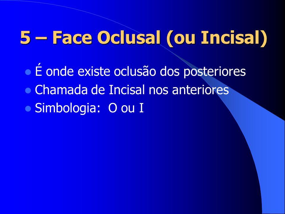 5 – Face Oclusal (ou Incisal) É onde existe oclusão dos posteriores Chamada de Incisal nos anteriores Simbologia: O ou I