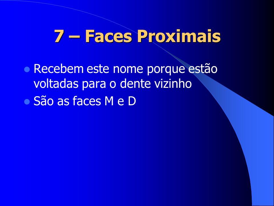 7 – Faces Proximais Recebem este nome porque estão voltadas para o dente vizinho São as faces M e D