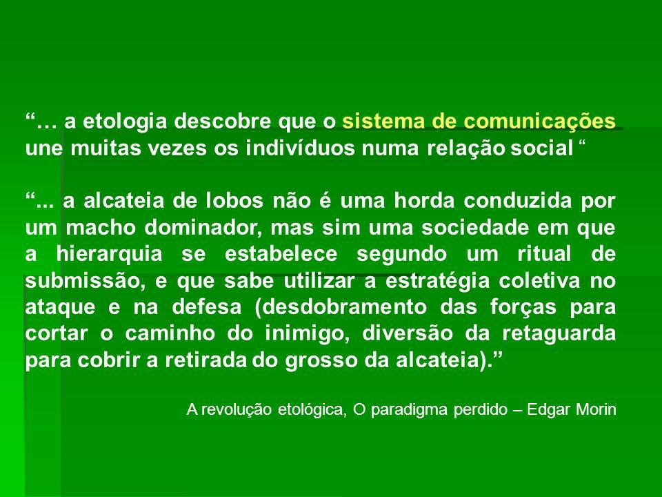 … a etologia descobre que o sistema de comunicações une muitas vezes os indivíduos numa relação social... a alcateia de lobos não é uma horda conduzid