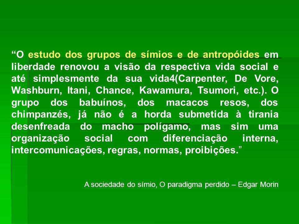 O estudo dos grupos de símios e de antropóides em liberdade renovou a visão da respectiva vida social e até simplesmente da sua vida4(Carpenter, De Vo