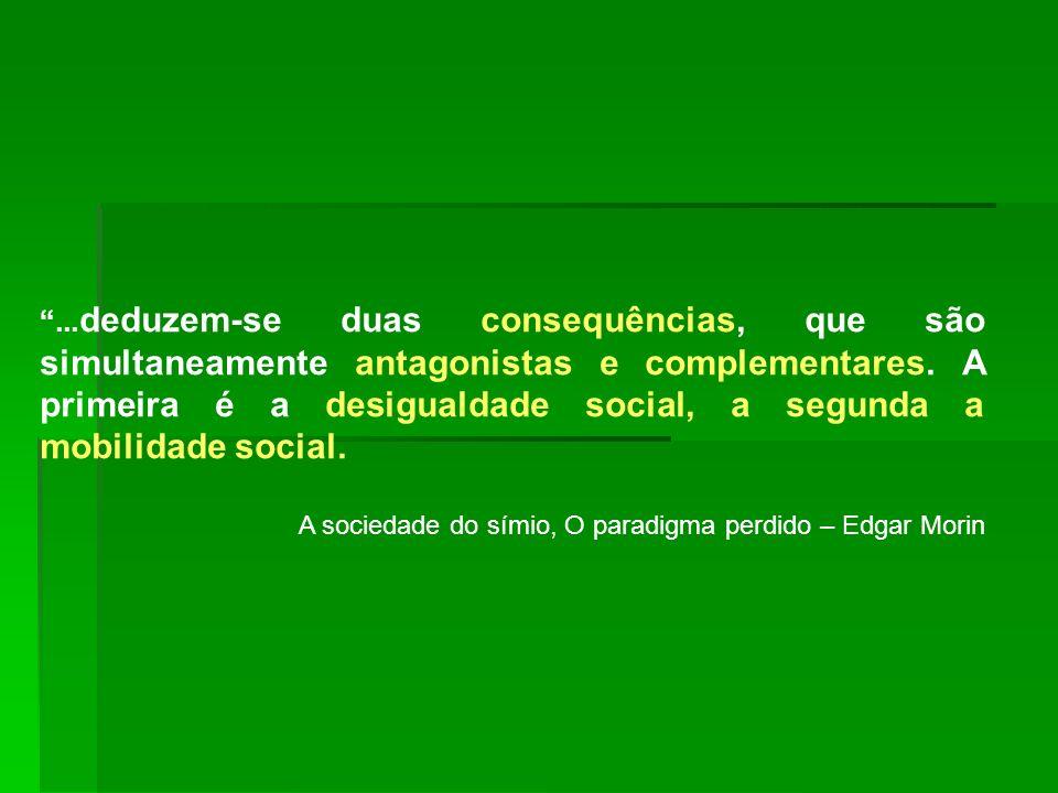 ... deduzem-se duas consequências, que são simultaneamente antagonistas e complementares. A primeira é a desigualdade social, a segunda a mobilidade s