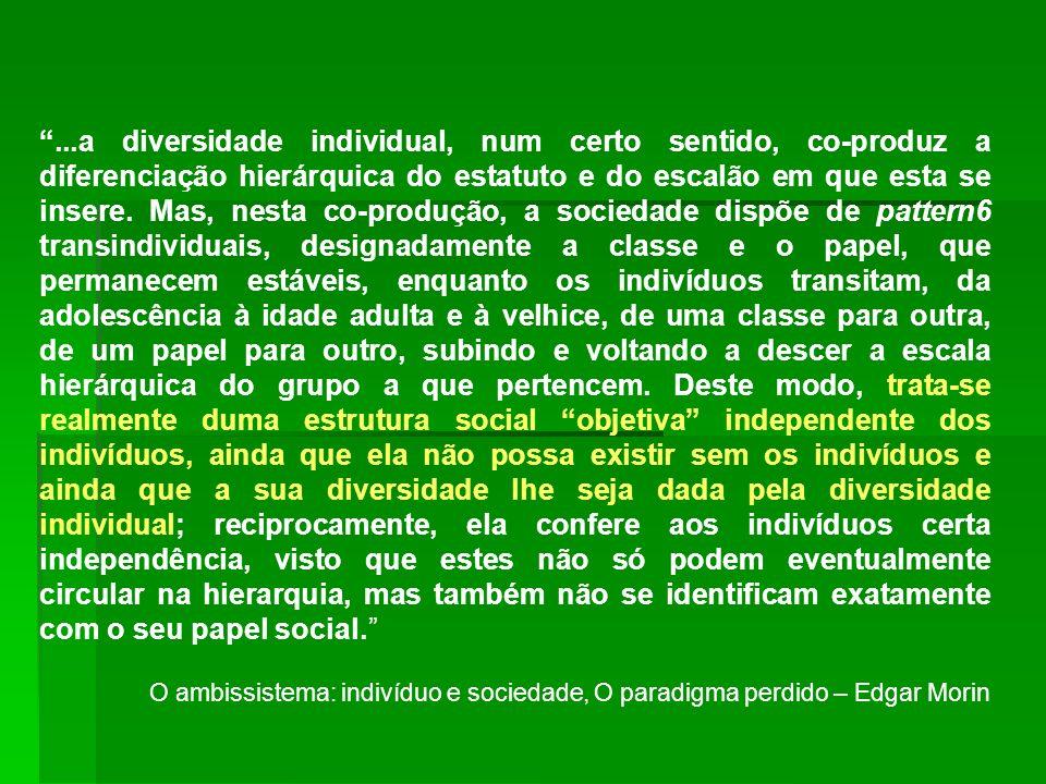 ...a diversidade individual, num certo sentido, co-produz a diferenciação hierárquica do estatuto e do escalão em que esta se insere. Mas, nesta co-pr