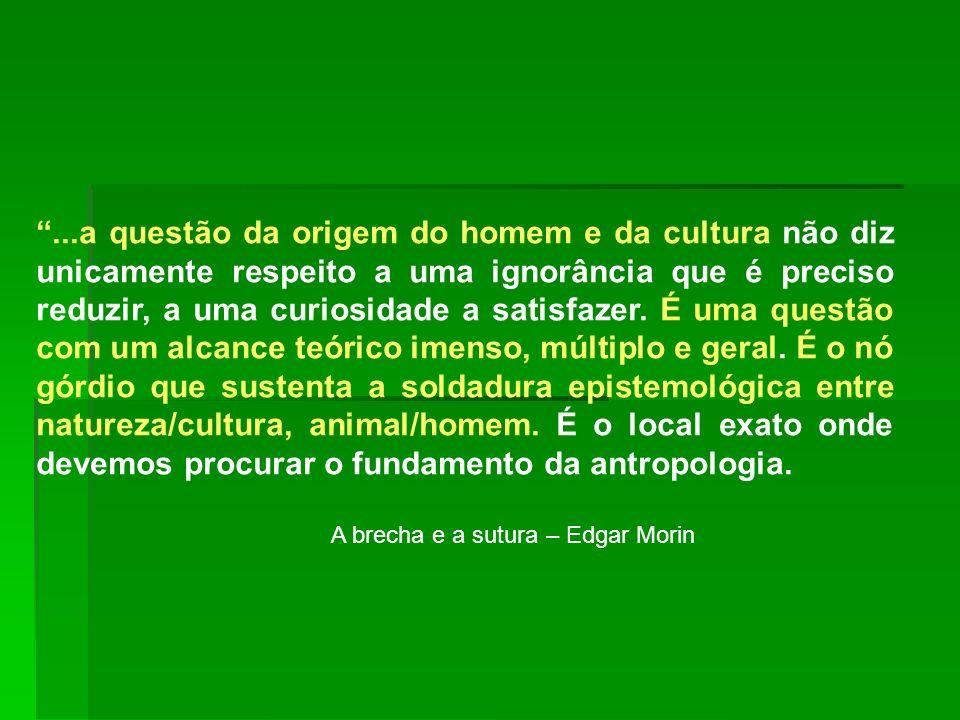 ...a questão da origem do homem e da cultura não diz unicamente respeito a uma ignorância que é preciso reduzir, a uma curiosidade a satisfazer. É uma