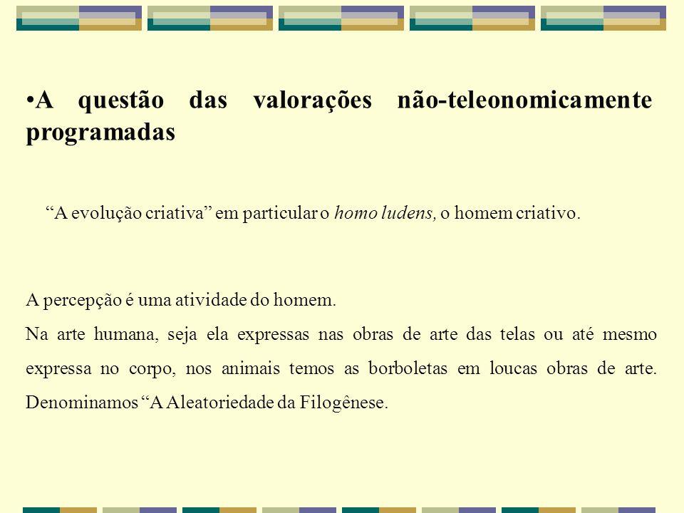 A questão das valorações não-teleonomicamente programadas A evolução criativa em particular o homo ludens, o homem criativo. A percepção é uma ativida