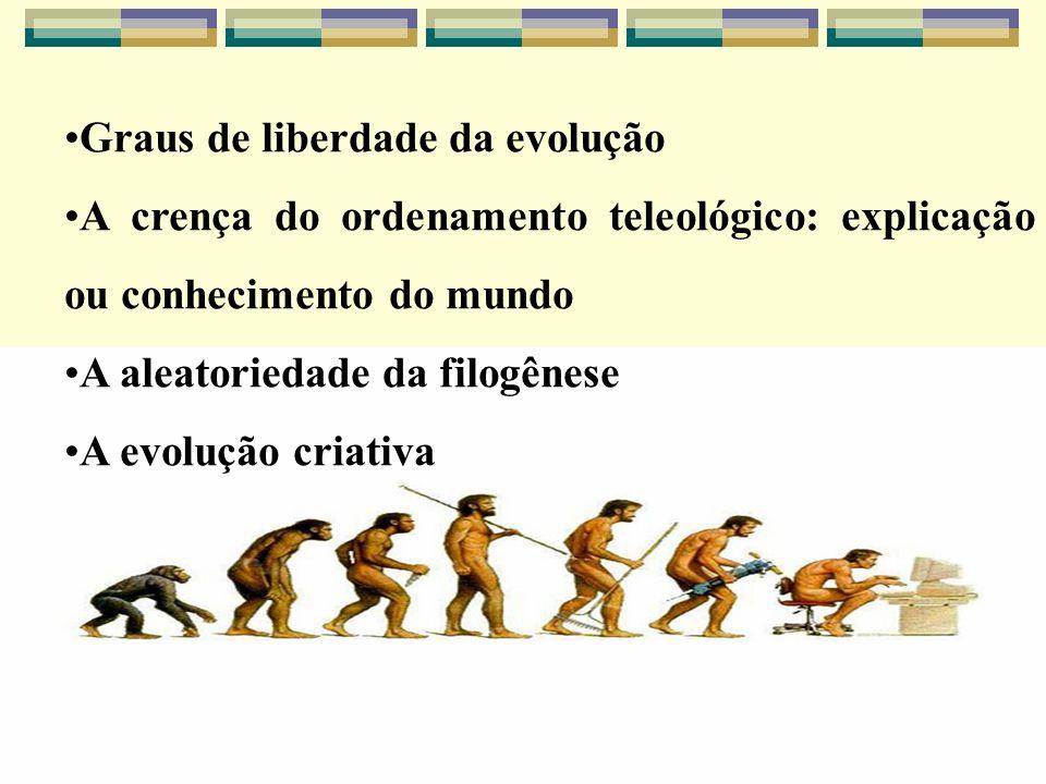 Graus de liberdade da evolução A crença do ordenamento teleológico: explicação ou conhecimento do mundo A aleatoriedade da filogênese A evolução criat