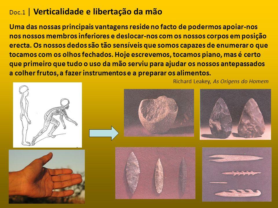 AusralopitecusHomo habilisHomo erectus Homem de Neandertal Homo sapiens sapiens -Locomoção sobre 2 membros bipedismo; -Vivia em pequenos grupos; - Comia raízes, insectos, pássaros e pequenos animais.
