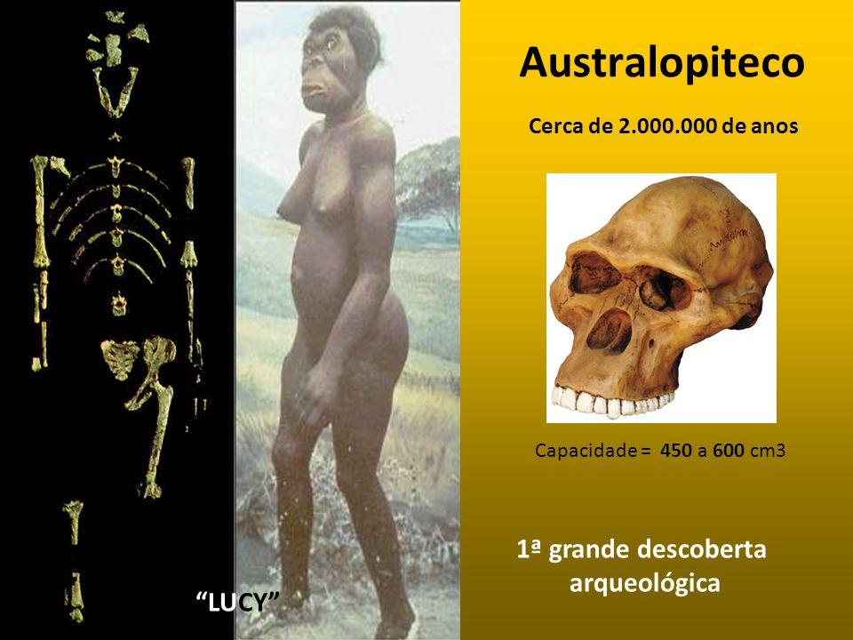 Australopiteco LUCY 1ª grande descoberta arqueológica Capacidade = 450 a 600 cm3 Cerca de 2.000.000 de anos