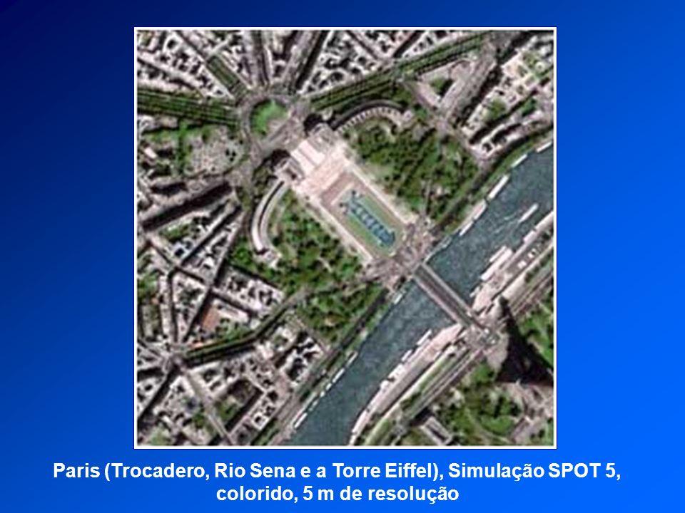 Paris (Trocadero, Rio Sena e a Torre Eiffel), Simulação SPOT 5, colorido, 5 m de resolução