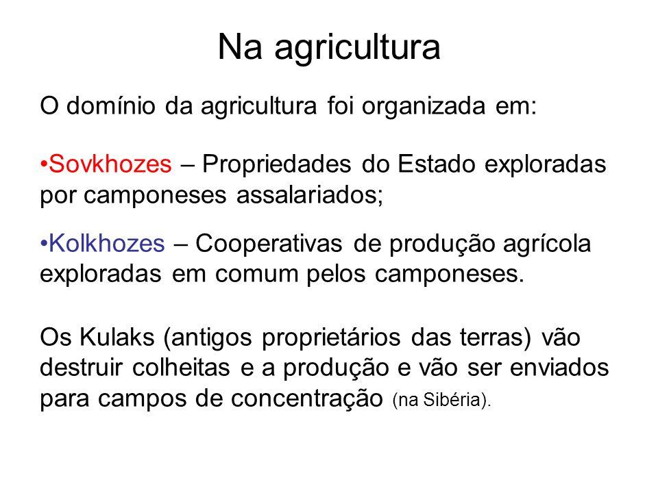 Na agricultura O domínio da agricultura foi organizada em: Sovkhozes – Propriedades do Estado exploradas por camponeses assalariados; Kolkhozes – Coop