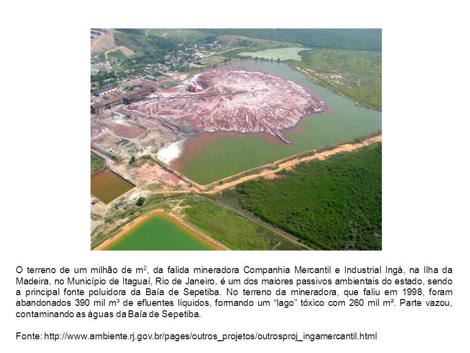 BIBLIOGRAFIA CETESB.Manual de gerenciamento de áreas contaminadas.