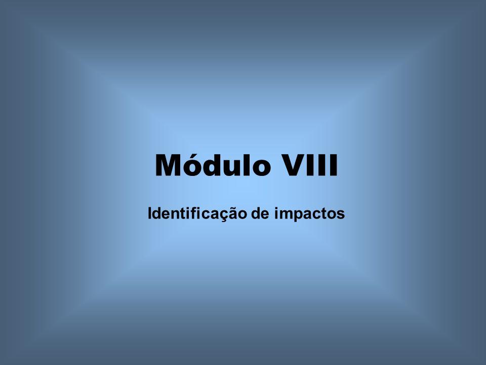 Módulo VIII Identificação de impactos
