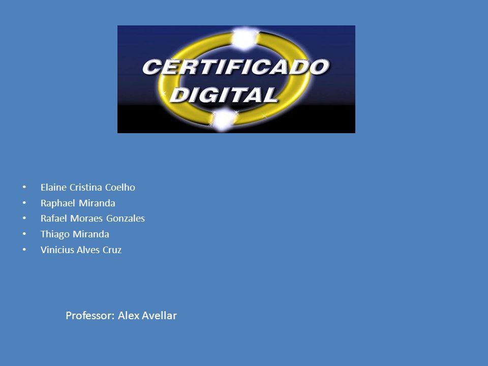 Elaine Cristina Coelho Raphael Miranda Rafael Moraes Gonzales Thiago Miranda Vinicius Alves Cruz Professor: Alex Avellar