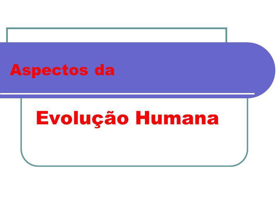 Aspectos da Evolução Humana