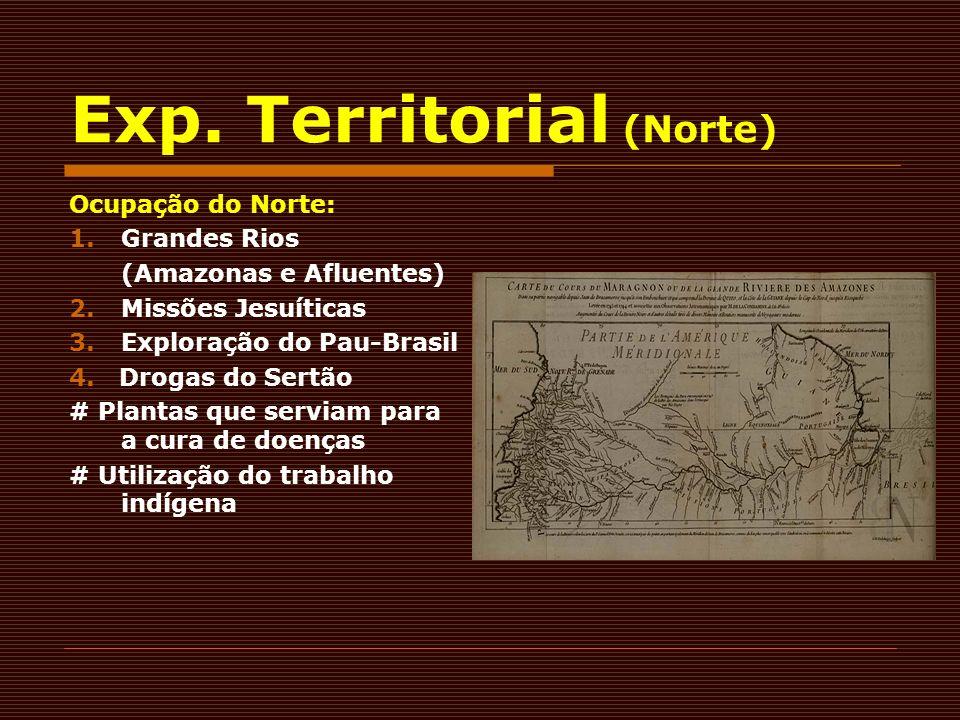 Exp. Territorial (Norte) Ocupação do Norte: 1.Grandes Rios (Amazonas e Afluentes) 2. Missões Jesuíticas 3. Exploração do Pau-Brasil 4. Drogas do Sertã