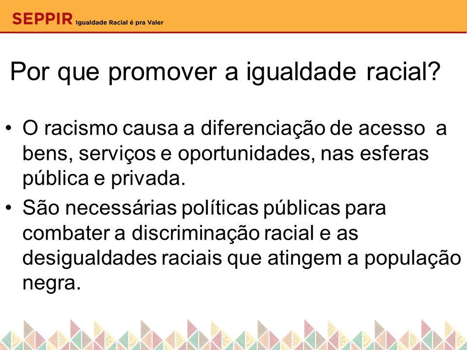Por que promover a igualdade racial? O racismo causa a diferenciação de acesso a bens, serviços e oportunidades, nas esferas pública e privada. São ne