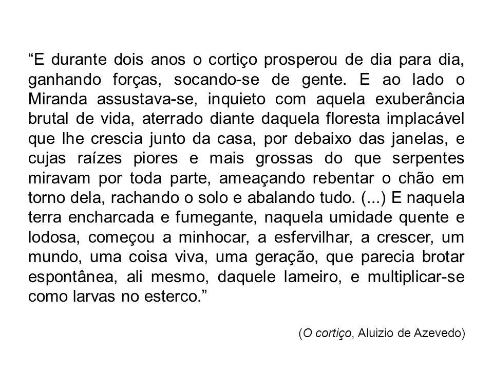 (Cortiço do Rio de Janeiro, início do século XX)