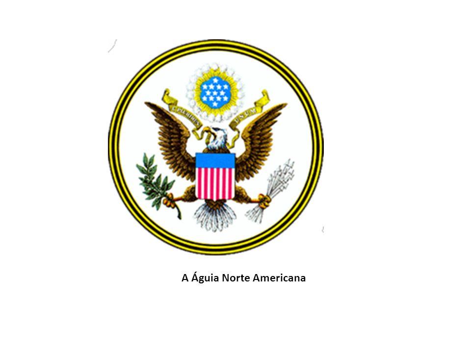 A Águia Norte Americana