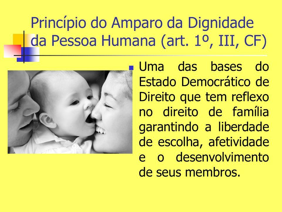 Princípio do Amparo da Dignidade da Pessoa Humana (art. 1º, III, CF) Uma das bases do Estado Democrático de Direito que tem reflexo no direito de famí
