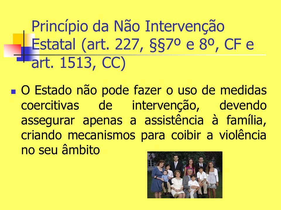 Princípio da Não Intervenção Estatal (art. 227, §§7º e 8º, CF e art. 1513, CC) O Estado não pode fazer o uso de medidas coercitivas de intervenção, de