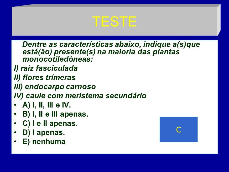 TESTE Dentre as características abaixo, indique a(s)que está(ão) presente(s) na maioria das plantas monocotiledôneas: I) raiz fasciculada II) flores trímeras III) endocarpo carnoso IV) caule com meristema secundário A) I, II, III e IV.