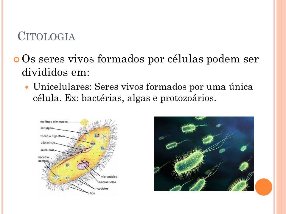 C ITOLOGIA Os seres vivos formados por células podem ser divididos em: Unicelulares: Seres vivos formados por uma única célula. Ex: bactérias, algas e